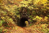 Tunnel with autum leaves — Stock Photo