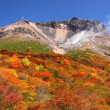 Stock Photo: Mountain autumn leaves