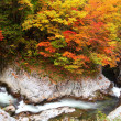 Autumn colours of valley — Foto Stock