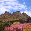 Mt. Myougi in spring - Stock Photo