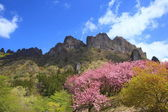 Mt. Myougi in spring — Stock Photo