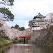 Stock Photo: Hirosaki castle and cherry blossoms