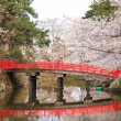 Stock Photo: Moat and red bridge