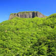 Crag mountain with fresh verdure — Stock Photo #26402883