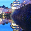 Stock Photo: Light up of Hirosaki castle and cherry blossoms