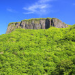 Crag mountain with fresh verdure — Foto Stock