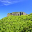 Foto Stock: Crag mountain with fresh verdure