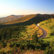 Mountain road — Stock Photo #32038743