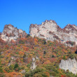 Stock Photo: Autumn colours of crag