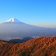 Autumn Mt. Fuji — Stock Photo #35700153
