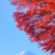 Mt. Fuji with red leaves — Stock Photo
