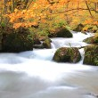 Stock Photo: Autumn Colors of Oirase Stream