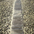 Boardwalk through desert dunes - Stock Photo