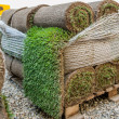 Royalty-Free Stock Photo: Green new turf grass roll