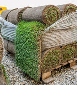 Green new turf grass roll — Stock Photo