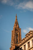 Straßburg Kathedrale Turm — Stockfoto