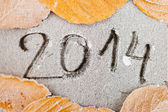 2014 written on frost — Stock Photo