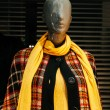 Stock Photo: Mannequin in coat and neck scarf