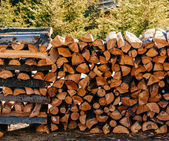 Stack of firewood — Stock fotografie