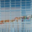 Stock Photo: Eurozone flags reflectig in EU Parliament building