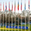 Постер, плакат: Council of Europe sign beside member flags