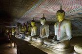Imagens de buda em pedra de dambulla cave temple, sri lanka — Fotografia Stock