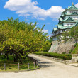 Nagoya Castle — Stock Photo #13950312