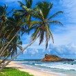 Mirissa beach, Sri Lanka - Stock Photo