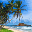 Mirissbeach, Sri Lanka — Stock Photo #13950552
