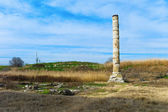 Temple of Artemis — Stock Photo