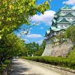Nagoya Castle — Stock Photo #24513431