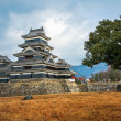 Matsumoto Castle, Japan — Stock Photo #39853279