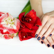 Spa treatment for woman hands with beautiful flowers — Stock Photo #19472837