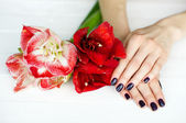 Spa treatment for woman hands with beautiful flowers — Stock Photo