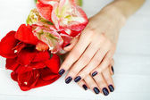 Spa treatment for woman hands with red flowers — Stock Photo