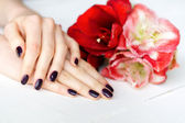 Spa manicure with red and white flowers — Stock Photo