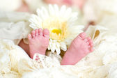 Infant's feet — Stock Photo
