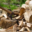 Axe and wooden log pieces - Stock Photo