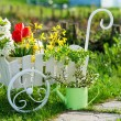 Garden utensils and wheelbarrow with flowers — Stock Photo #25135359