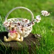 Wicker basket and toy bear in the garden — Stock Photo