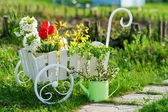 Garden utensils and wheelbarrow with flowers — Stock Photo