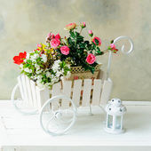 White wheelbarrow with flowers — Stock Photo