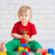 Little boy and constructor blocks — Stock Photo #25615731
