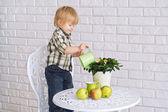 Chico regar una flor del pote — Foto de Stock