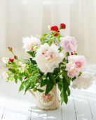Delicate peonies in a water can — Stock Photo