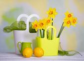 Jarní světlé Zátiší s květinami a detaily — Stock fotografie