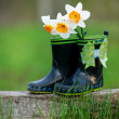 Kid's rain boots and flowers — Stock Photo #45199741
