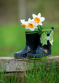 Kid's rain boots and flowers — Stock Photo