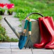 Rain boots and garden utensils — Stock Photo #45534331