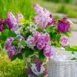 Still life with bunch of lilac flowers — Stock Photo #46236923